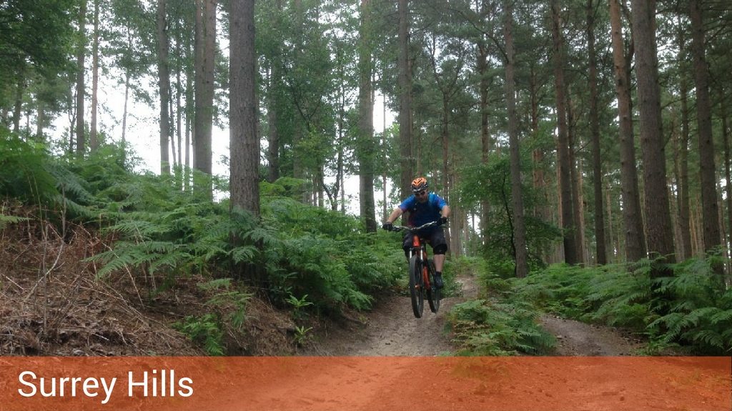 Mountain Biking on the Surrey Hills Guided MTB