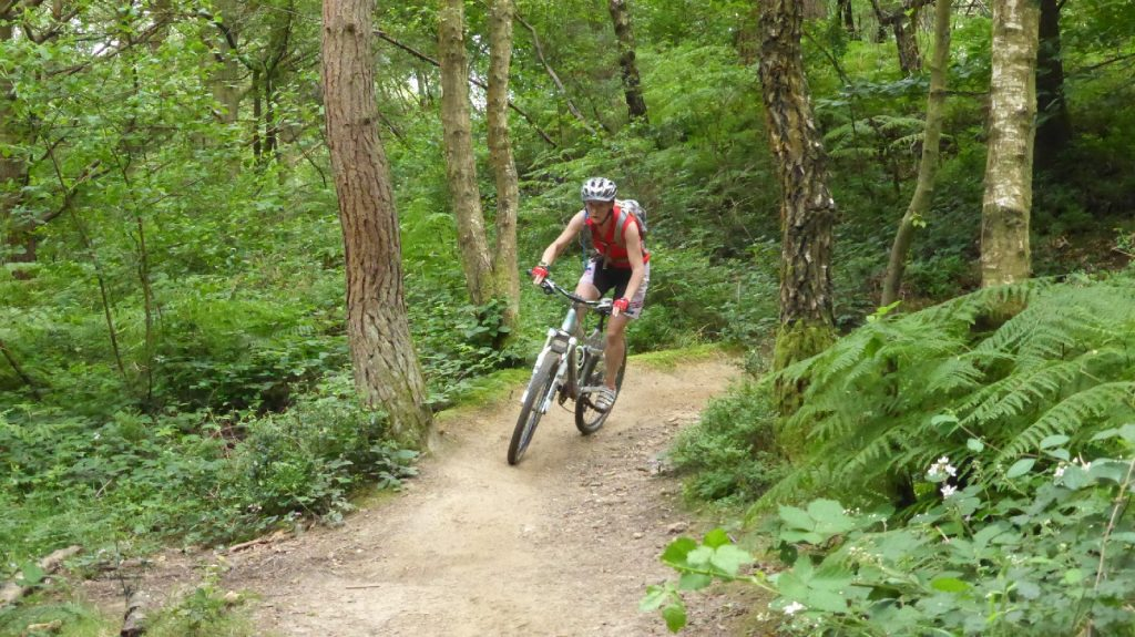Surrey Hills Guided Rides and Mountain biking weekends