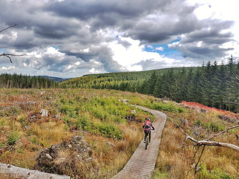 Guided Mountain Biking in Wales Clywdian Range Llandegla