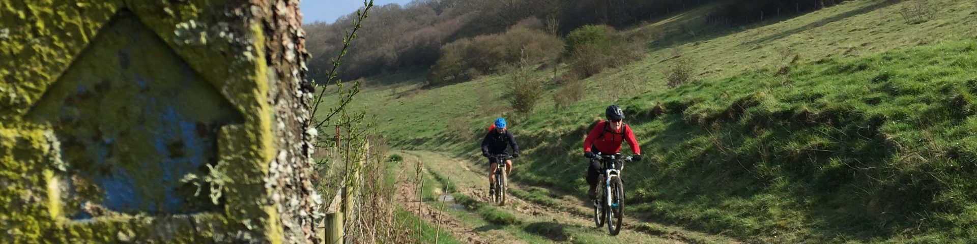 South Downs Mountain Biking